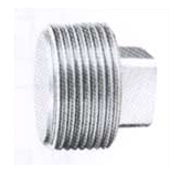 Square Head Plug exporter, Square Head Plug suppliers india, Square Head Plug stockist